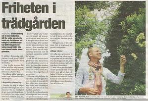 Trädgårdsdesign Skåne Lund Malmö Trädgårdsarkitekt