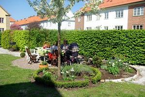 Trädgårdsdesign trädgårdsplanering bostadrättsförening Skåne