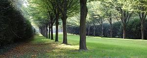 Trädgårdsdesign trädgårdsrådgivning trädgårdsplanering Lund Malmö Skåne